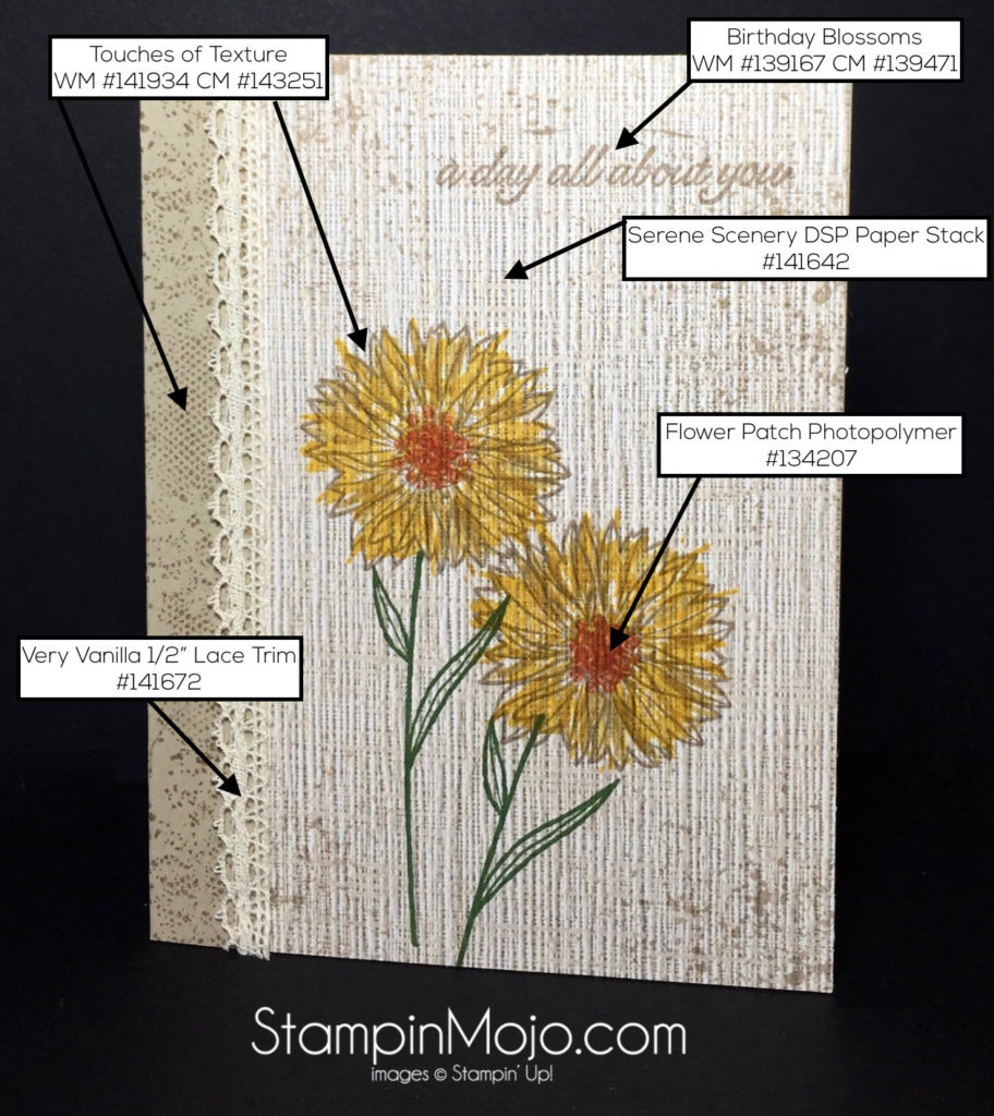 Stampin Up, Touches of Texture, Birthday card - Michelle Gleeson, SU