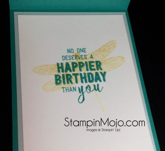 stampin-up-dragonfly-dreams-birthday-card-ideas-michelle-gleeson-stampinup-su