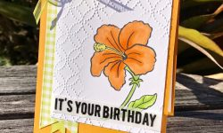 Stampin Up Humming Along Gingham Gala Birthday Card Ideas Michelle Gleeson Stampinup SU
