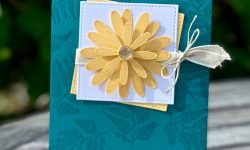 Stampin Up Daisy Lane Bundle Anytime Card idea Michelle Gleeson Stampinup SU