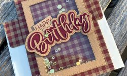 Honey-Bee-Stamps-Happy-Birthday-Honey-Cuts-Shaker-Cards-Masculine-card-idea-Michelle-Gleeson-Stampinmojo